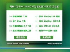 雨林木风Ghost Win10 X32位 青春装机版V201610(免激活)