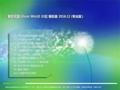 番茄花园Ghost Win10 (32位) 专业版 2016v12(无需激活)