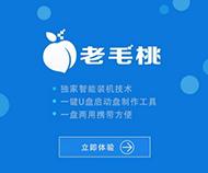 老毛桃一键重装大白菜专业版系统软件特别版9.9.3