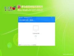 新萝卜家园Windows10 快速2021新年春节版32位